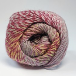 Scheepjes Our Tribe - 961 50 Shades of 4ply