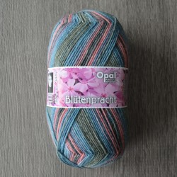 Opal Blütenpracht 9114 Flammenblume